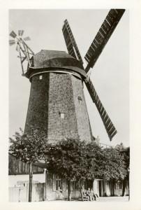 Die Schwedenmühle (Wesselsche Mühle) in Anklam